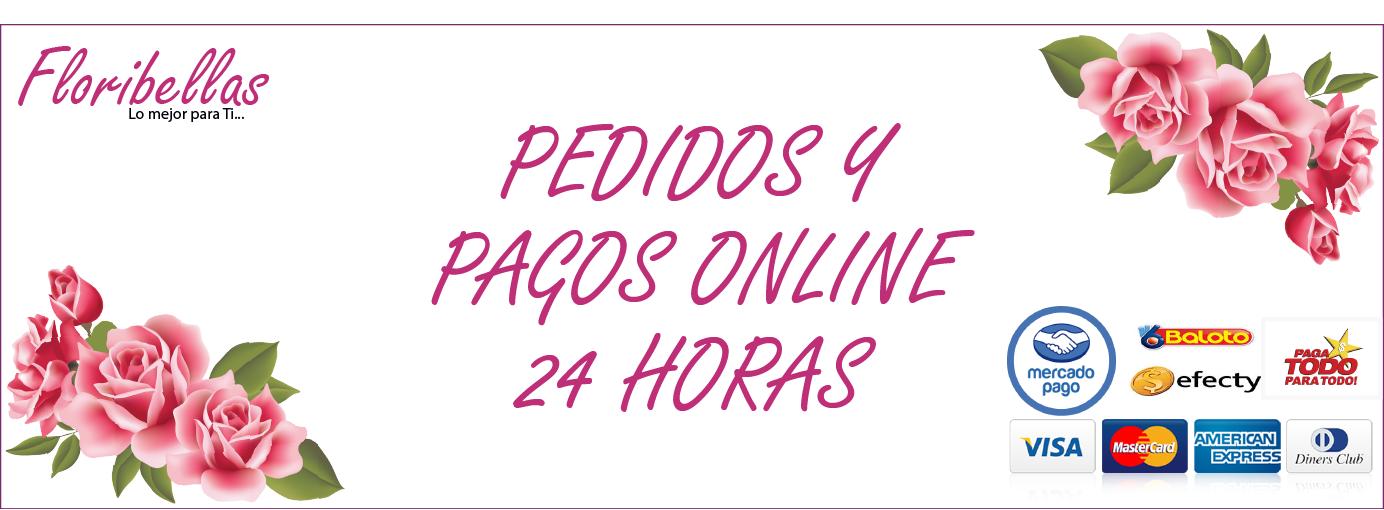 Pagos y pedidos las 24 horas online